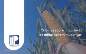 Tributos Sobre Importacao De Milho Sofrem Mudancas M Pereira - M.PEREIRA Contabilidade